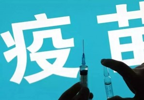 从三聚氰胺到问题疫苗,是谁给劣质产品开了一条华容道?
