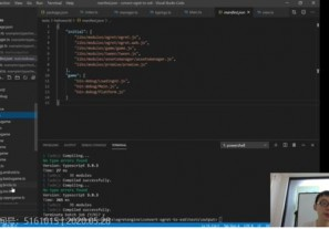 白鹭引擎王泽:巧用Webpack与EUI Compiler改善重度小游戏开发效率